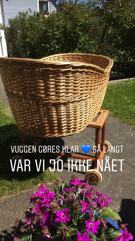 vugge_25.05.2019