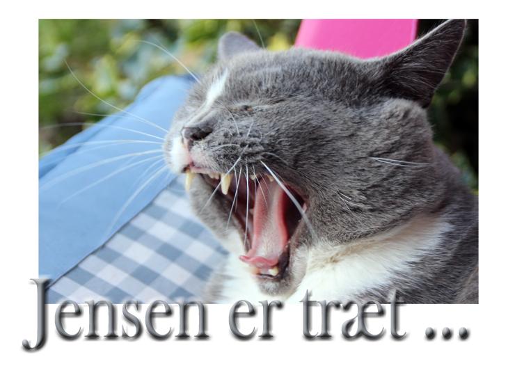 jensen_230714
