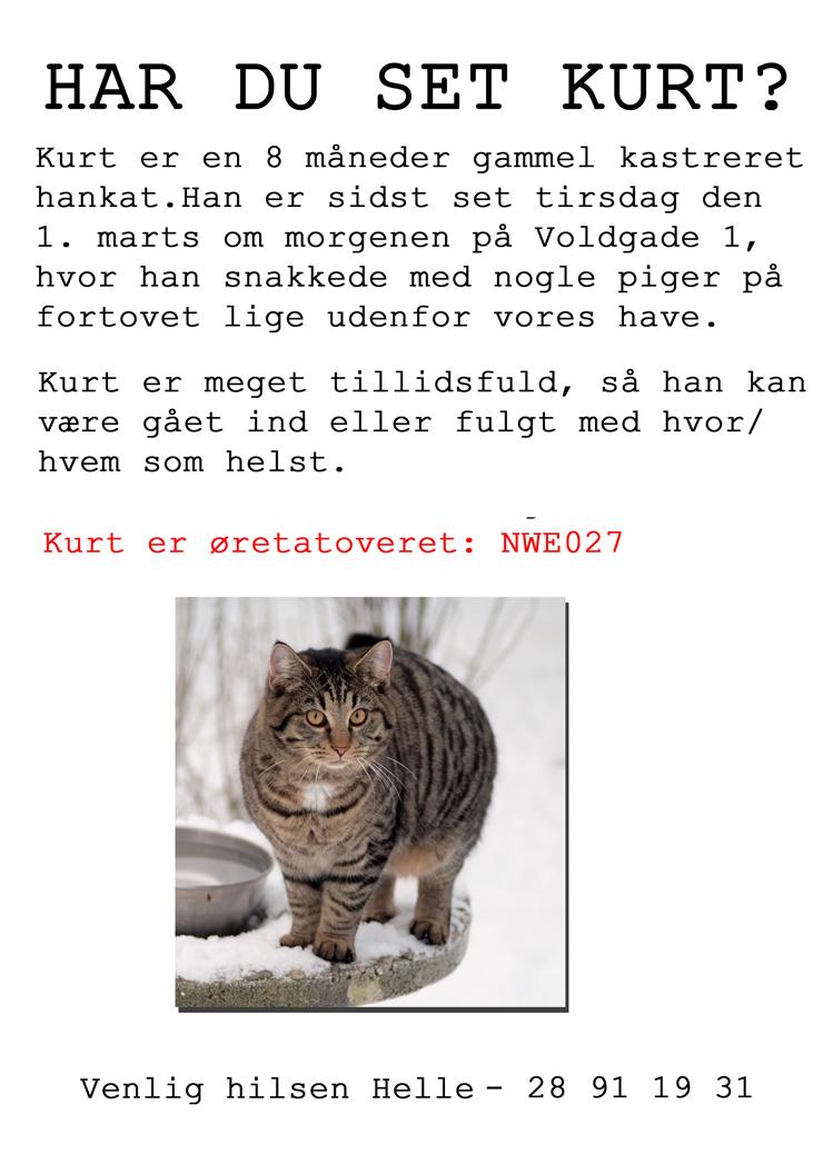 kurt_er_væk_01.03