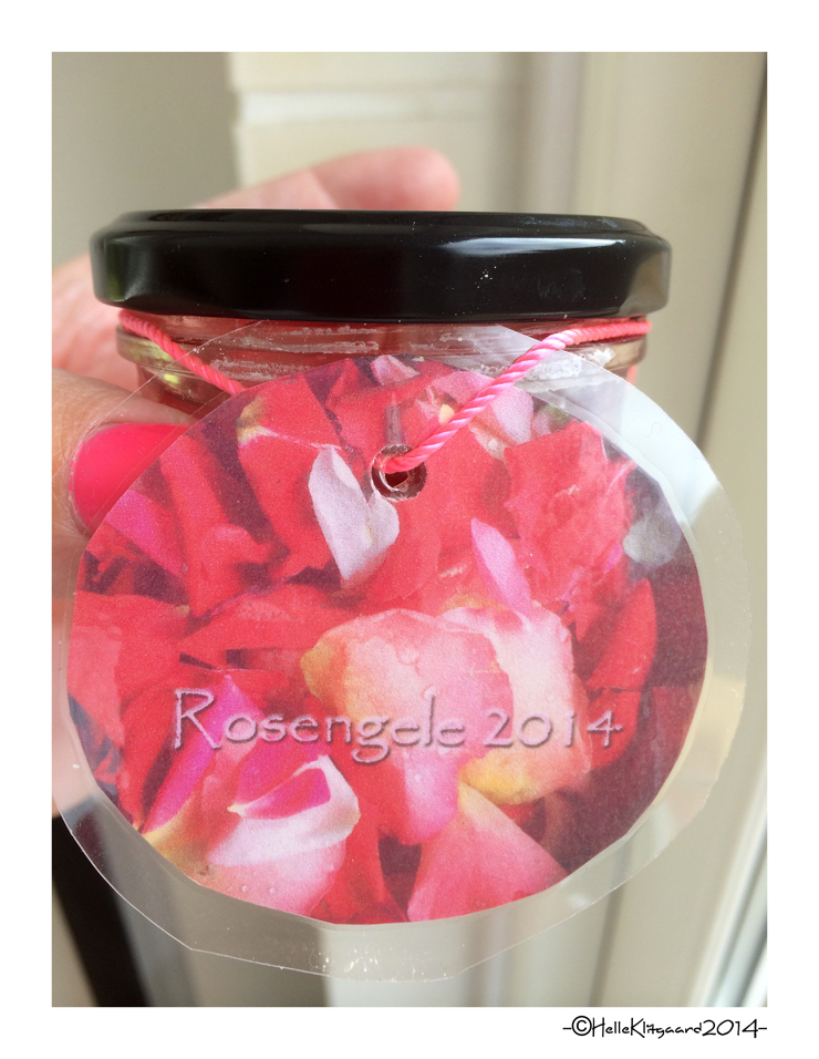 rosengele_210614_b