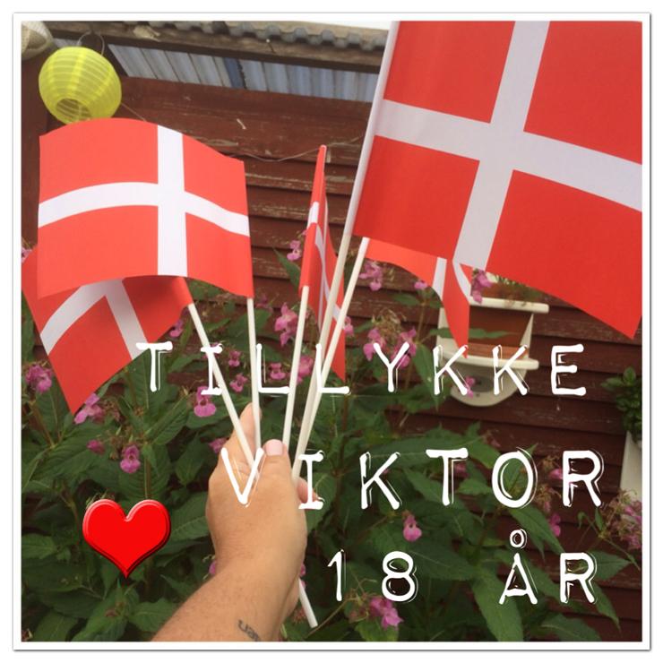 viktor_18_år_130914